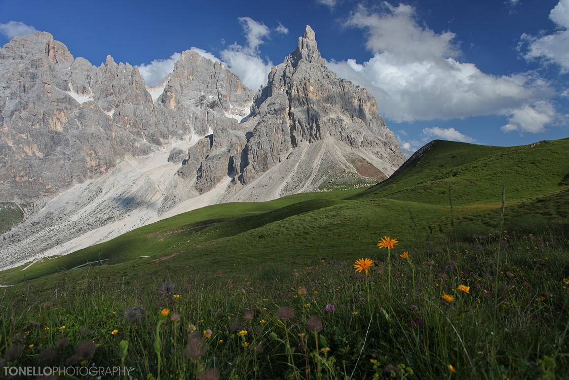 Castellaz (2333m) - Pale di S.Martino